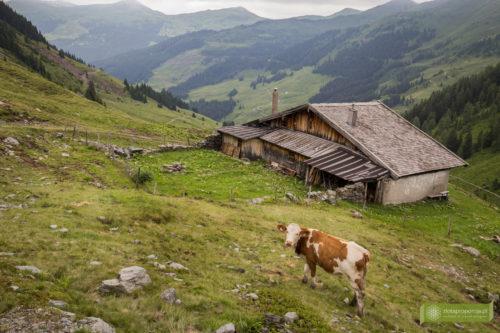 Saalbach-9026