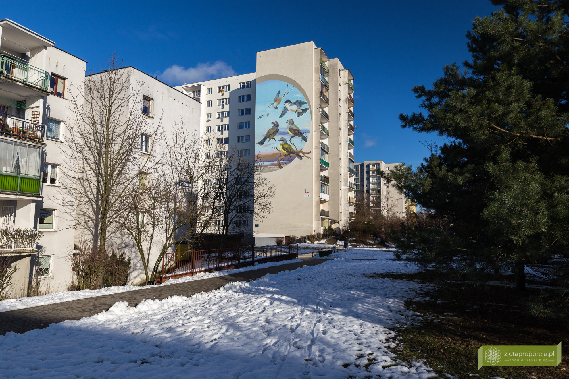 Ursynowskie murale i ptasie mieszkania na pustych cianach for Mural alternatywy 4