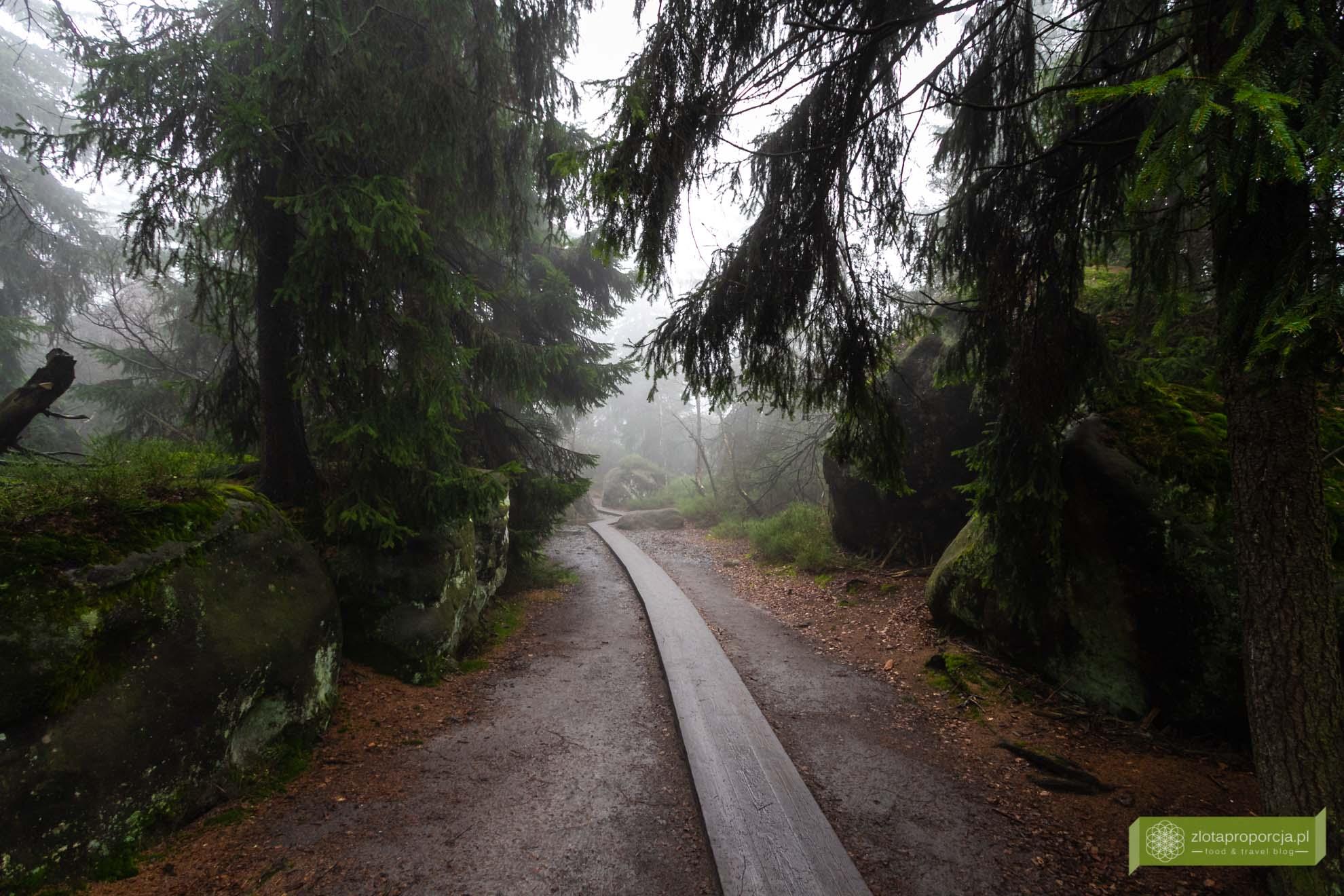 Góry Stołowe Dolny Śląsk; Góry Stołowe szlaki; Góry Stołowe atrakcje; Szczeliniec;