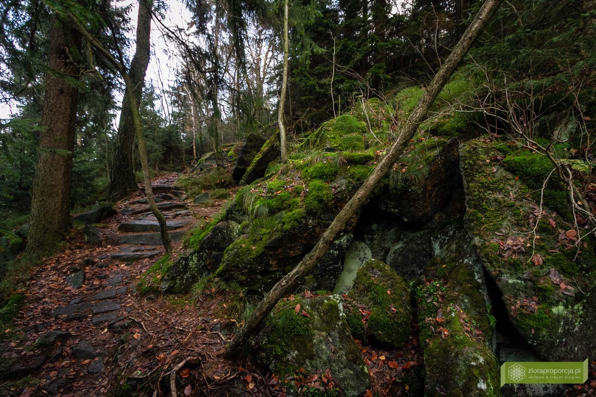 Ślęża; Góra Ślęża; Masyw Ślęży; okolice Wrocławia; Ślęża szlaki; Ślęża legendy; miejsce mocy; Góra mocy;