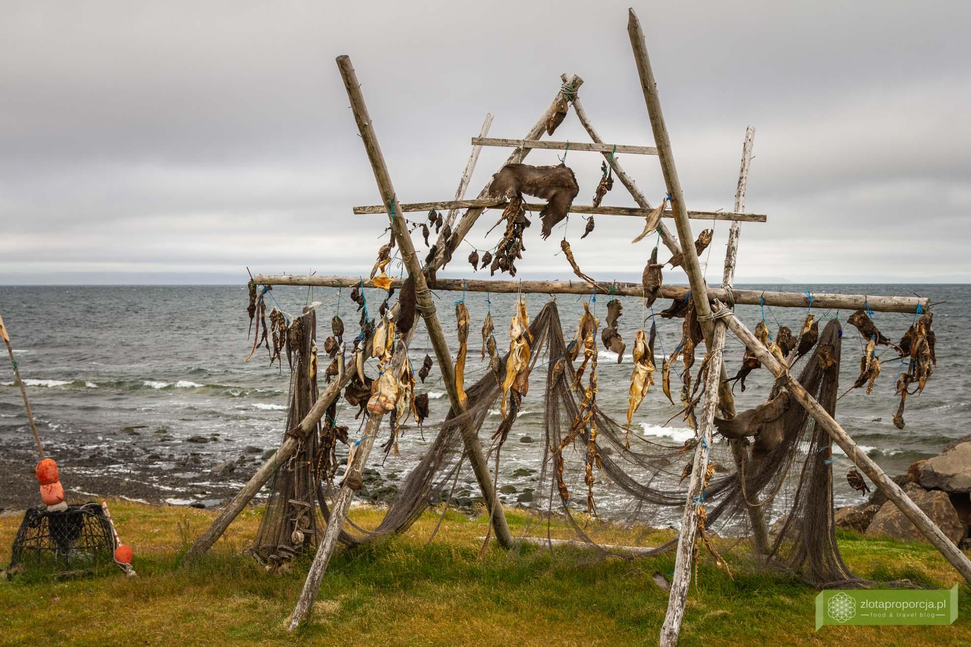 kuchnia islandii, kuchnia islnadzka, islandzkie potrawy, co zjeść na Islandii; islandzkie specjały; Harðfiskur; suszona ryba; ryby suszone islandia;