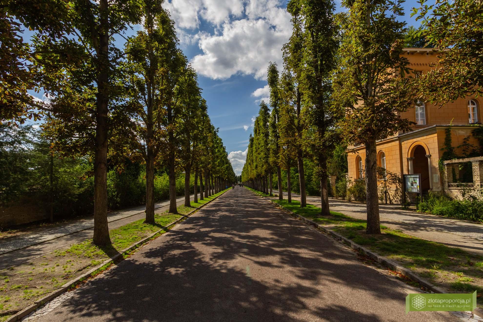 Poczdam, atrakcje Poczdamu, Brandenburgia, atrakcje Brandenburgii; Sanssouci; Poczdam Sanssouci; Park Sanssouci; Pałac Sanssouci;