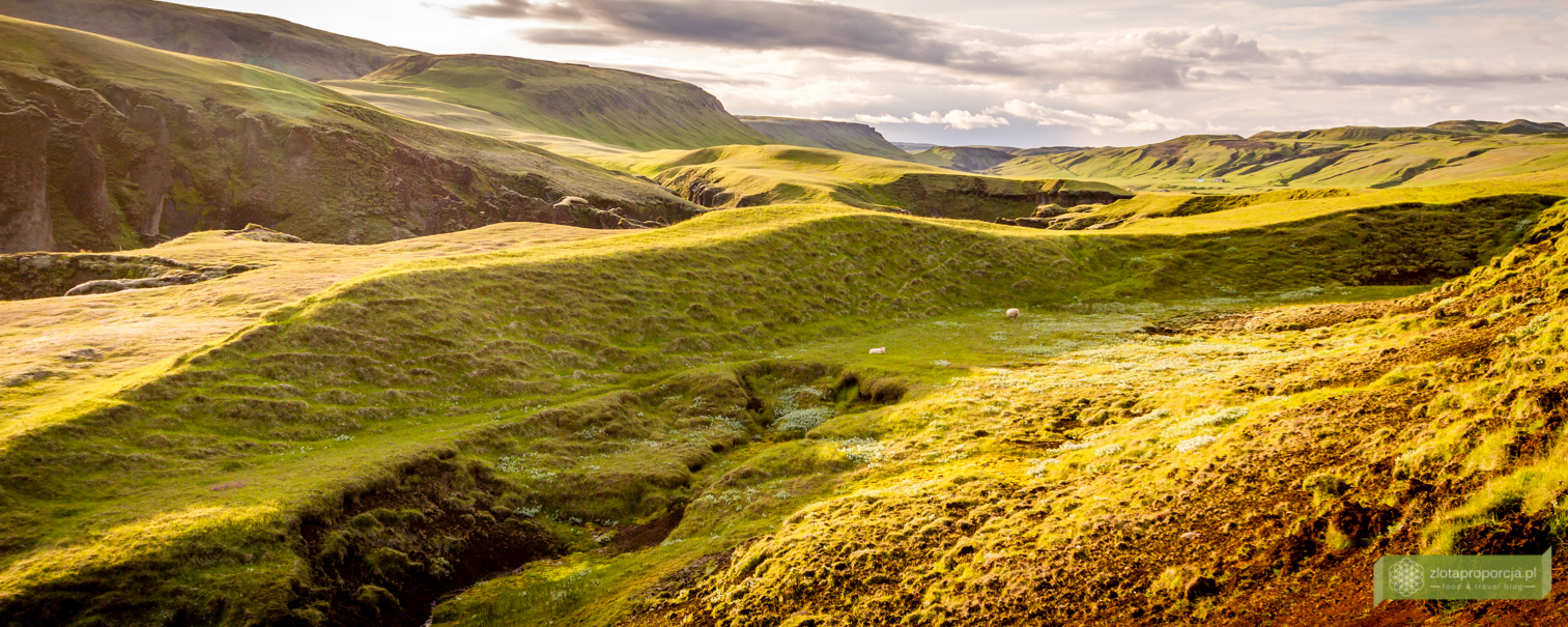 kanion Fjaðrárgljúfur, Południowo-wschodnia Islandia, Islandia, Islandia atrakcje, Islandia ciekawe miejsca
