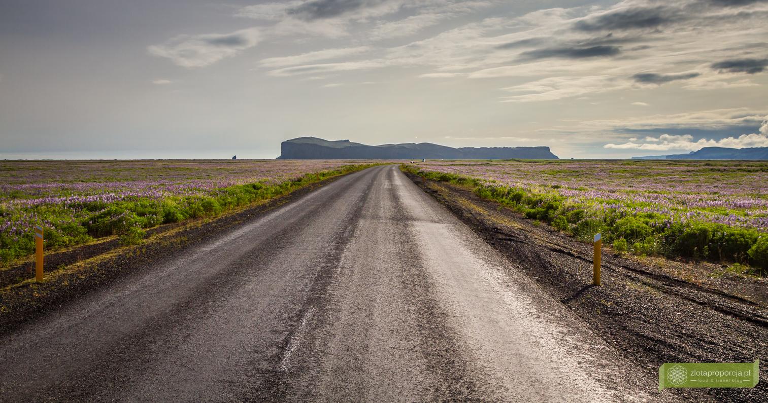 Islandia_z_drogi_0477