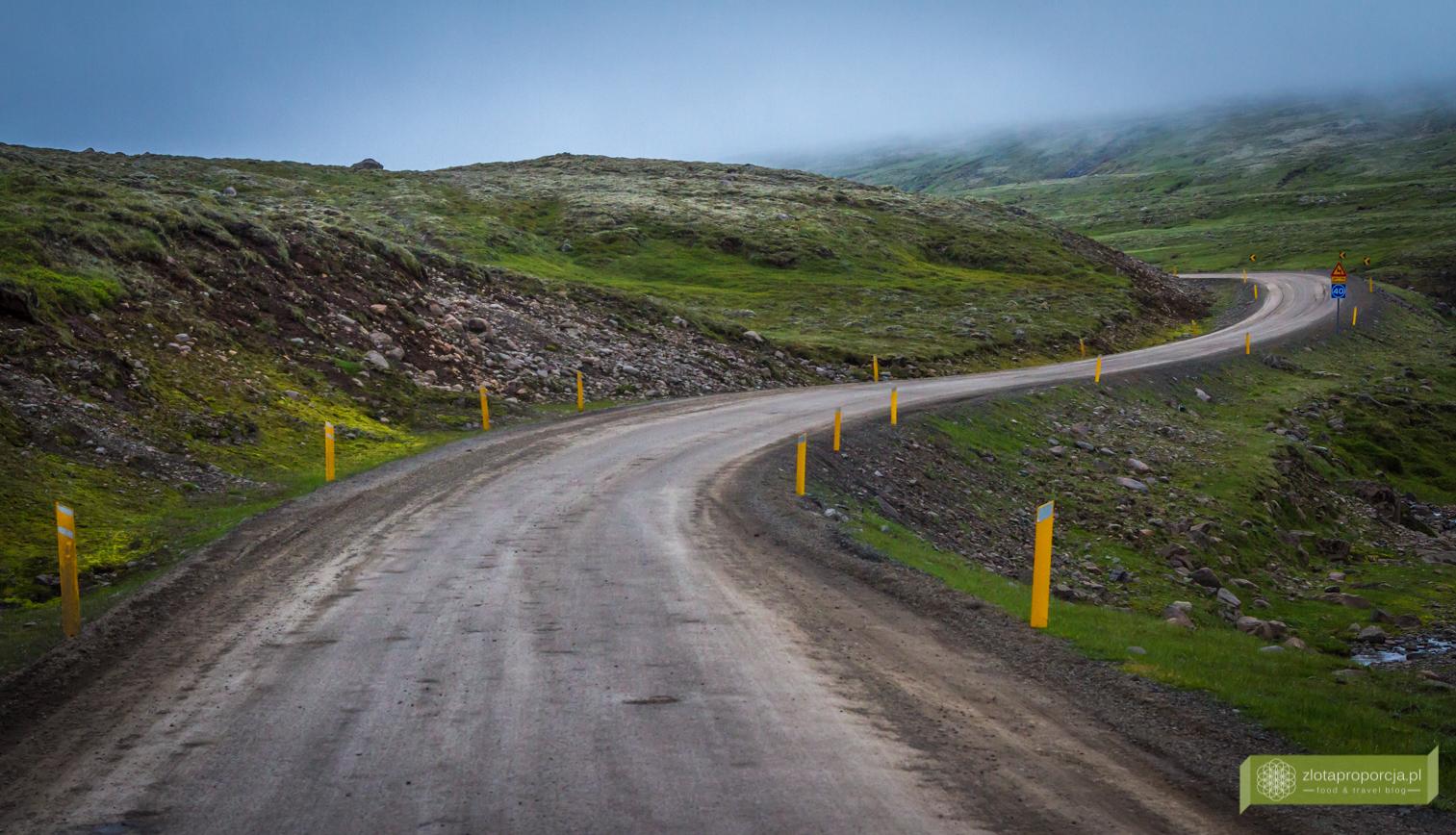 Islandia_z_drogi_0663
