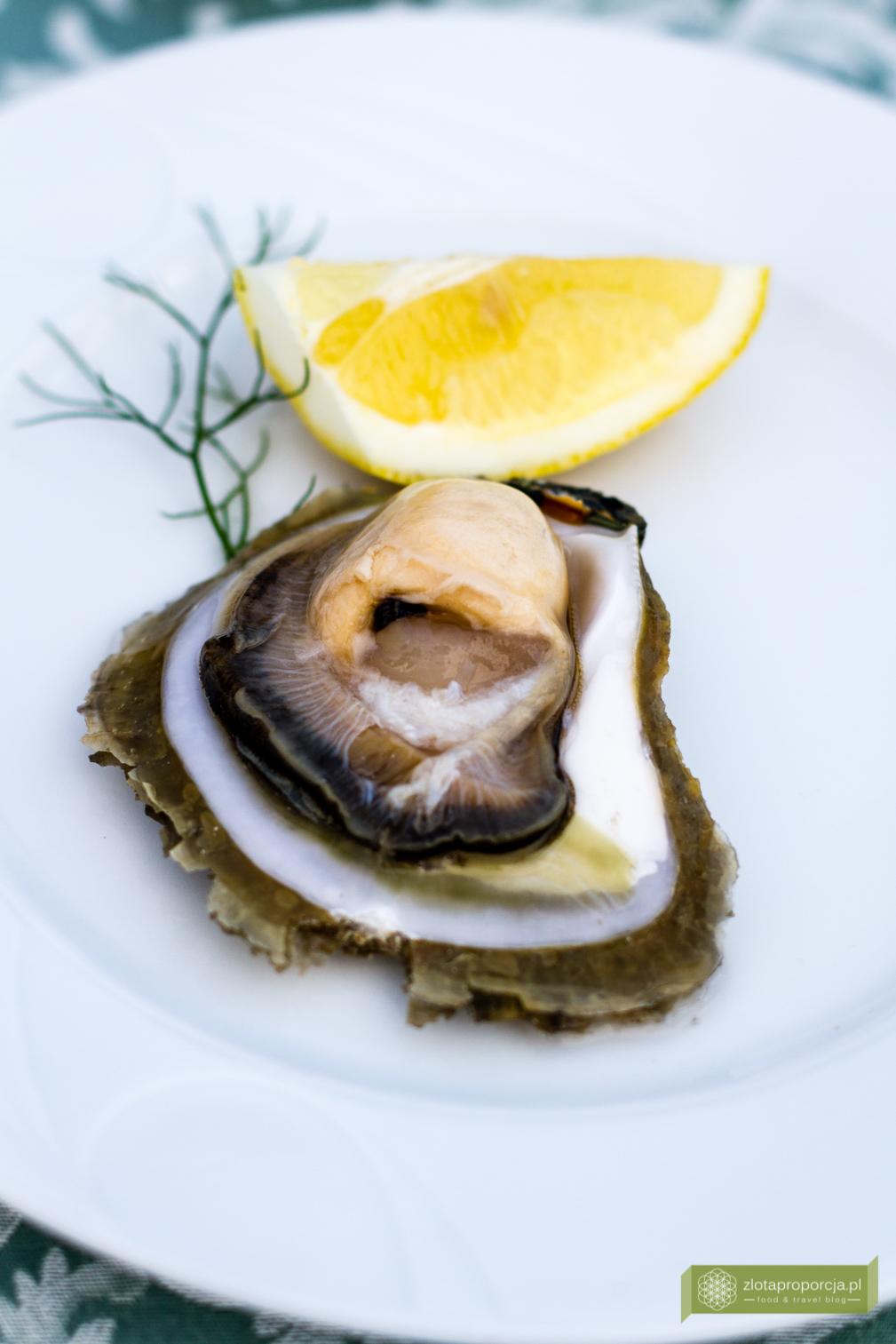 kuchnia chorwacka, kuchnia Istrii, Istria, co zjeść na Istrii, kanał Limski, ostryga