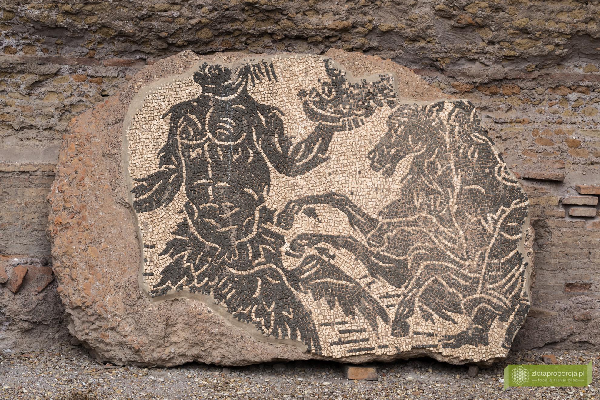 Termy Karakalli, Rzym, atrakcje Rzymu, co zobaczyć w Rzymie, Lazio
