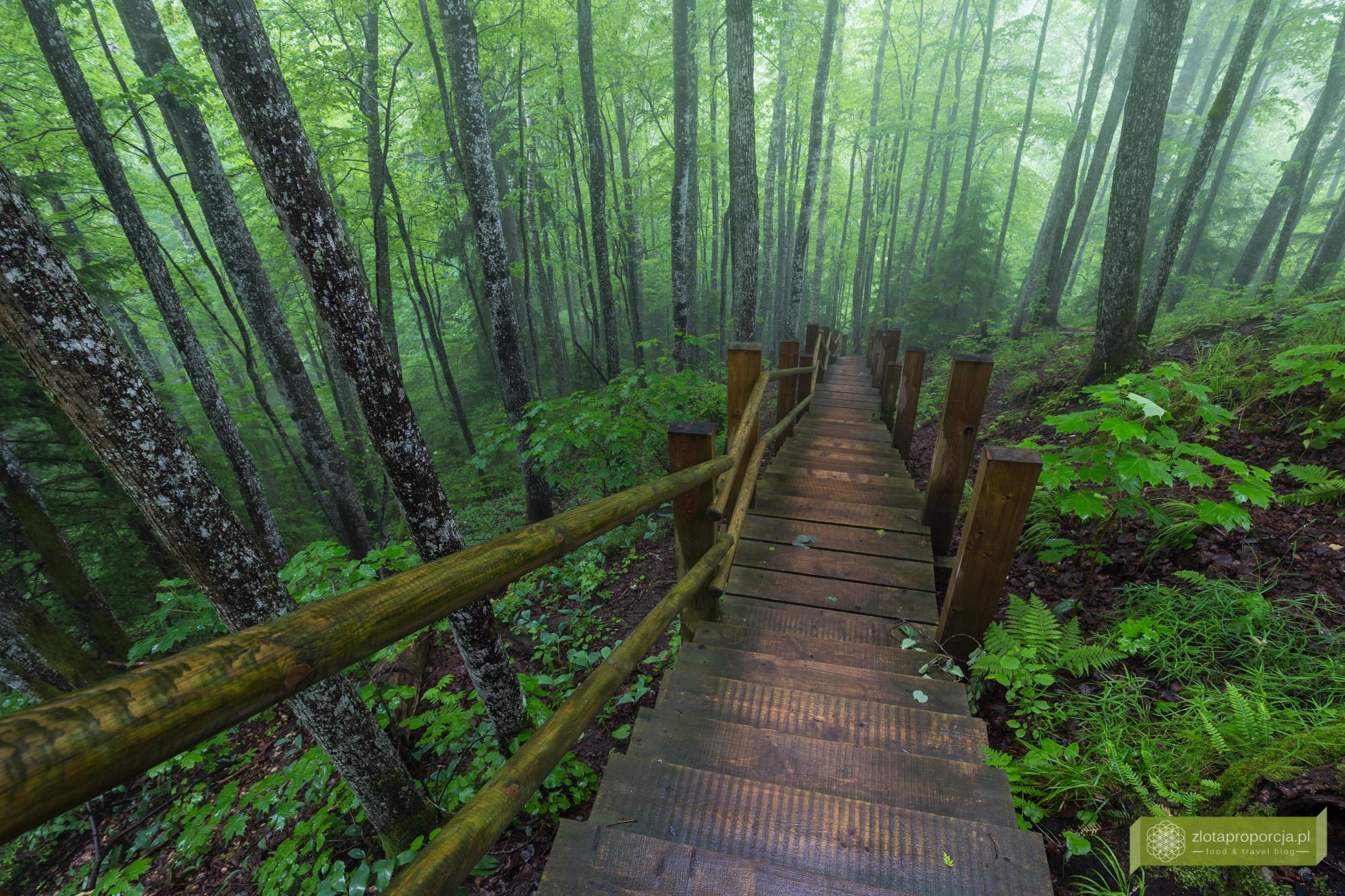 Łotwa, Park Narodowy Gauja, atrakcje Łotwy, Sigulda