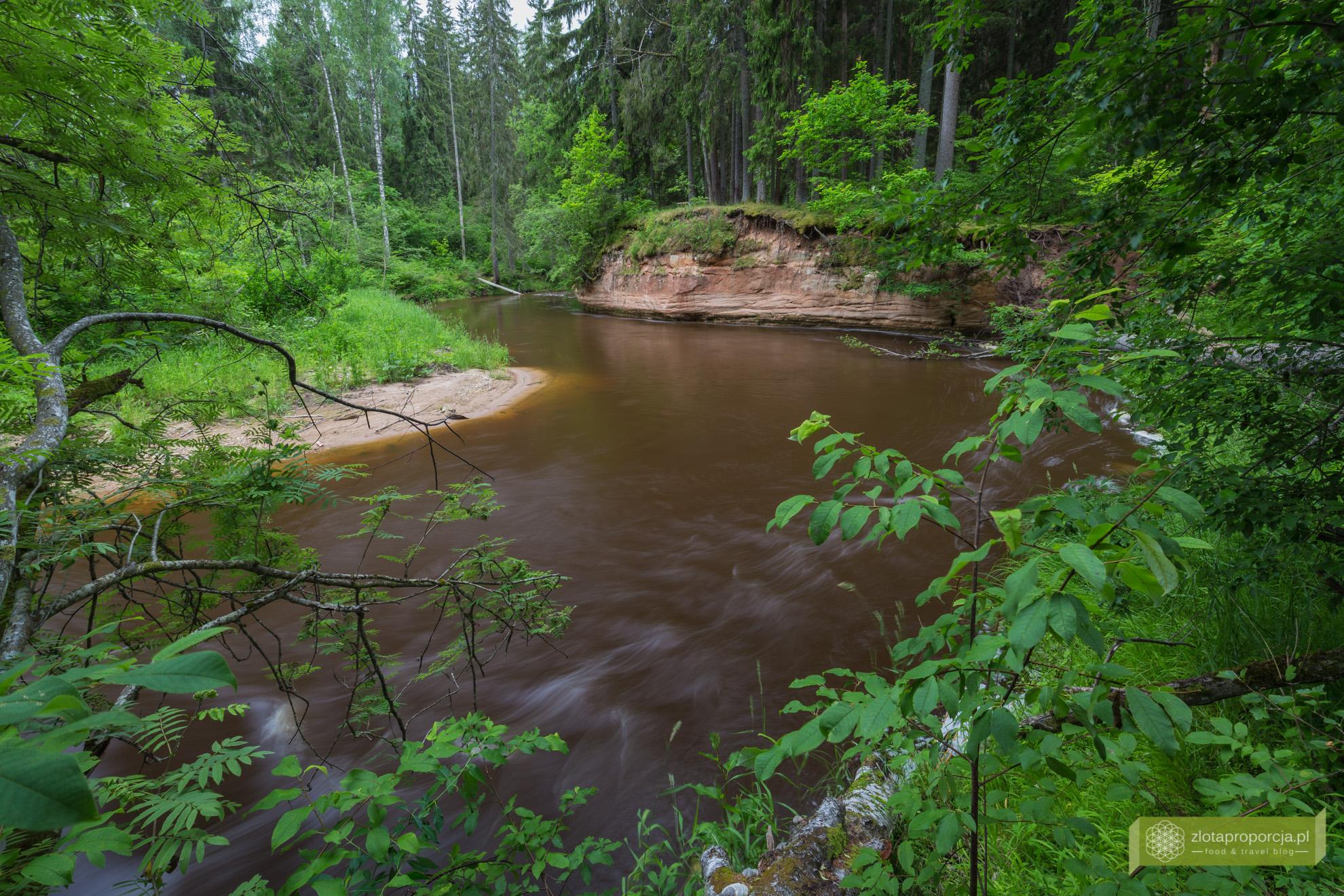 Łotwa, Park Narodowy Gauja, atrakcje Łotwy, rzeka Gauja