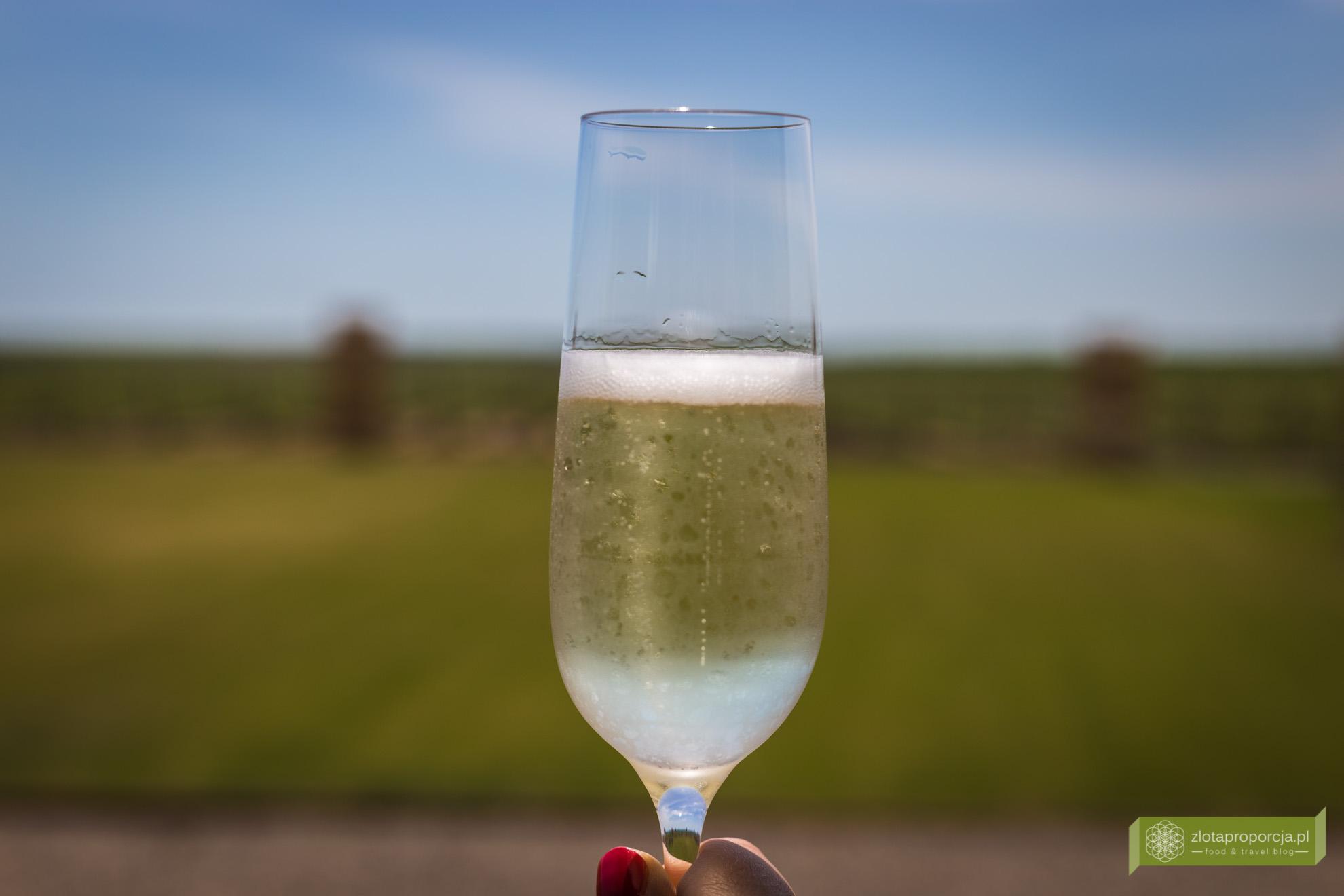 Mołdawia, wino mołdawskie, winnice Mołdawii, winnica Et Cetera