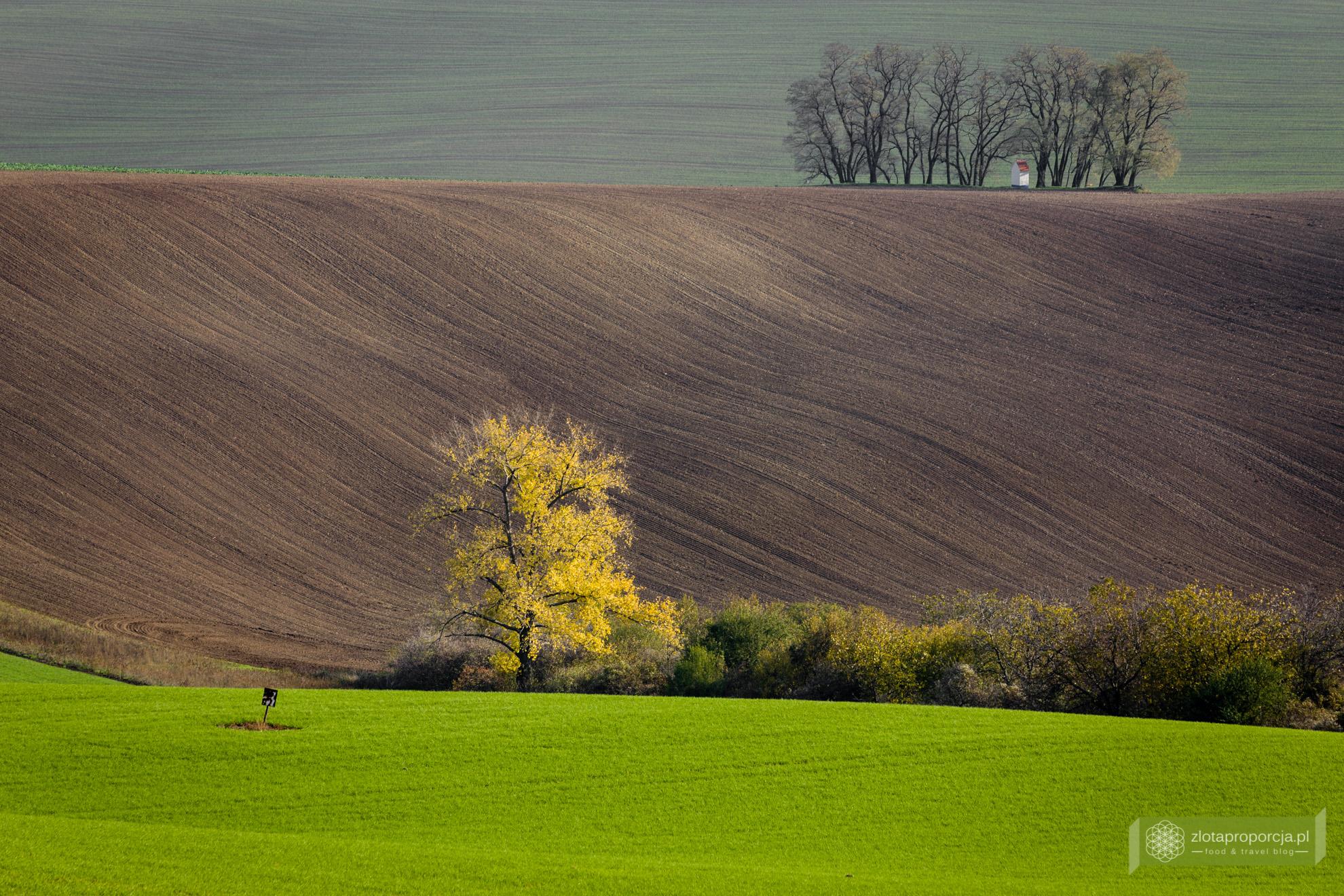 Morawy Południowe, Kyjov, morawskie pola, atrakcje Moraw, kapliczka św. Barbory