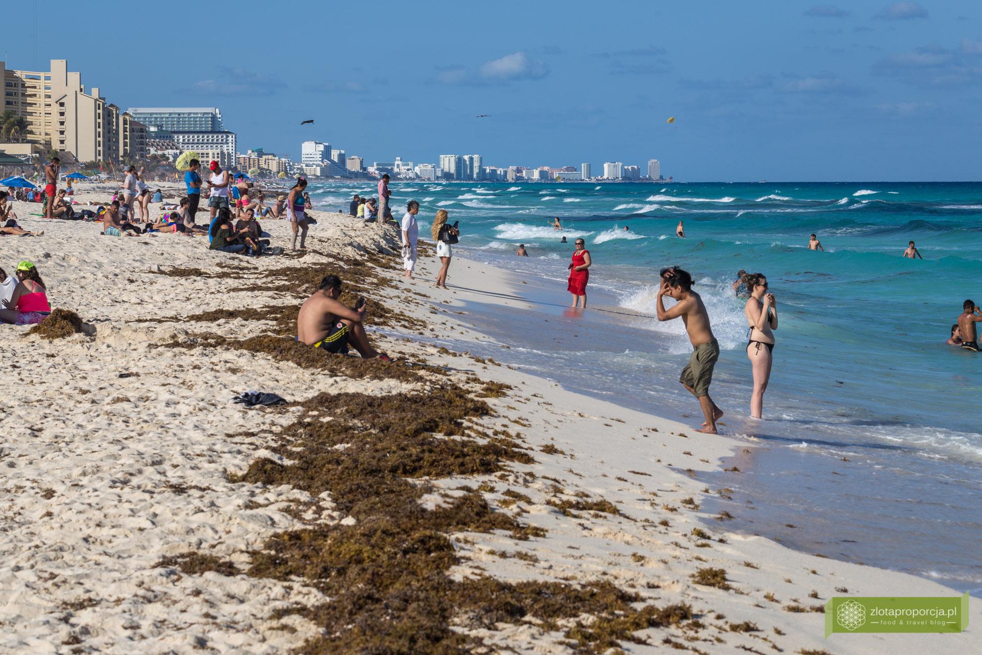 Meksyk, Jukatan, dookoła Jukatanu, atrakcje Jukatanu, Cancun, Playa Delfines