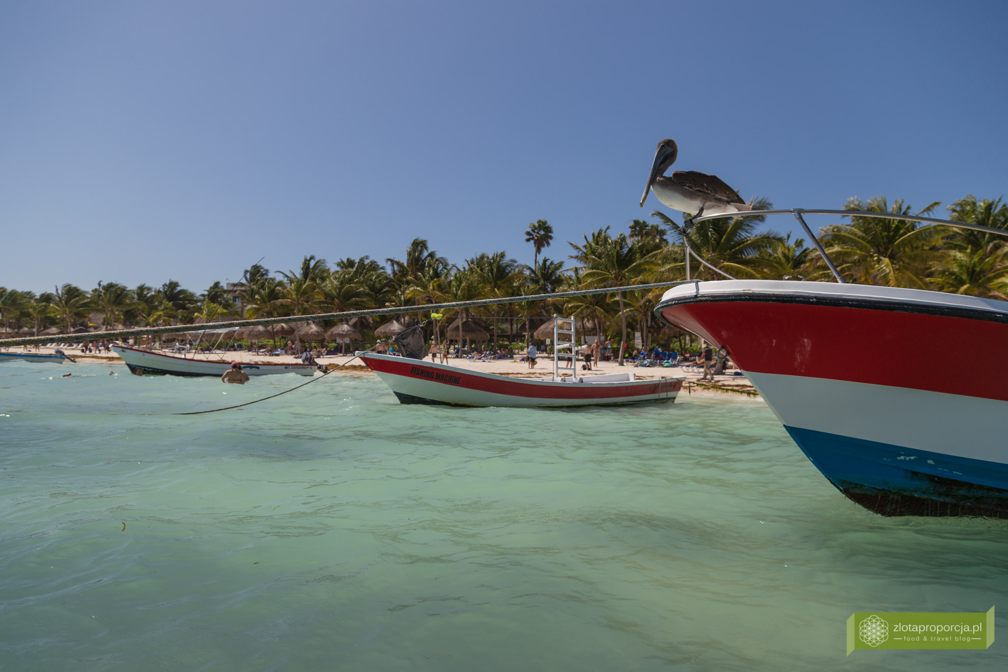 Meksyk, Jukatan, dookoła Jukatanu, atrakcje Jukatanu, Akumal