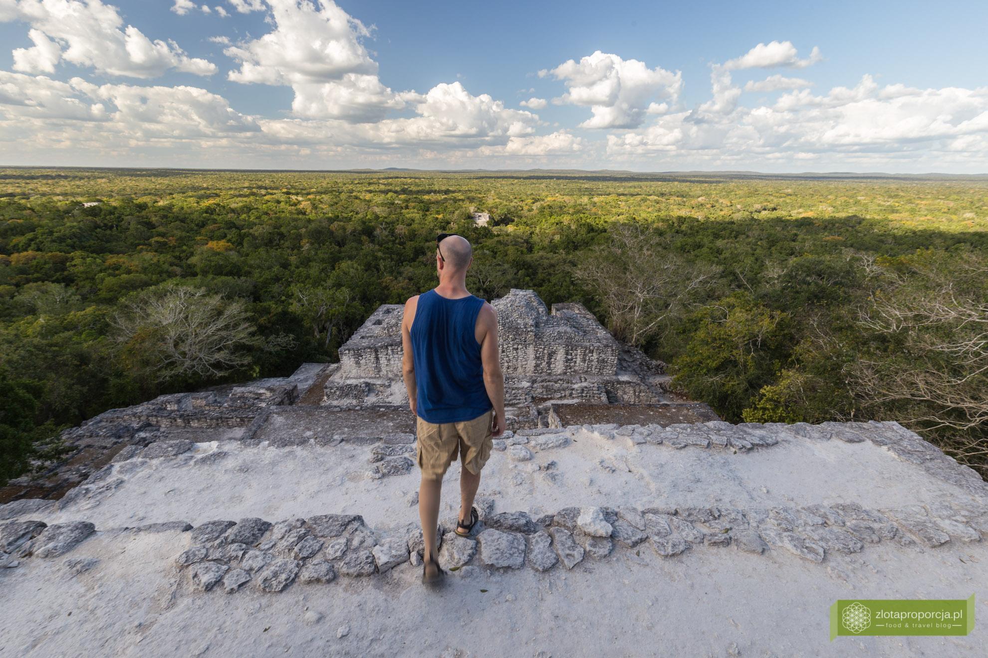 Meksyk, Jukatan, dookoła Jukatanu, atrakcje Jukatanu, Calakmul