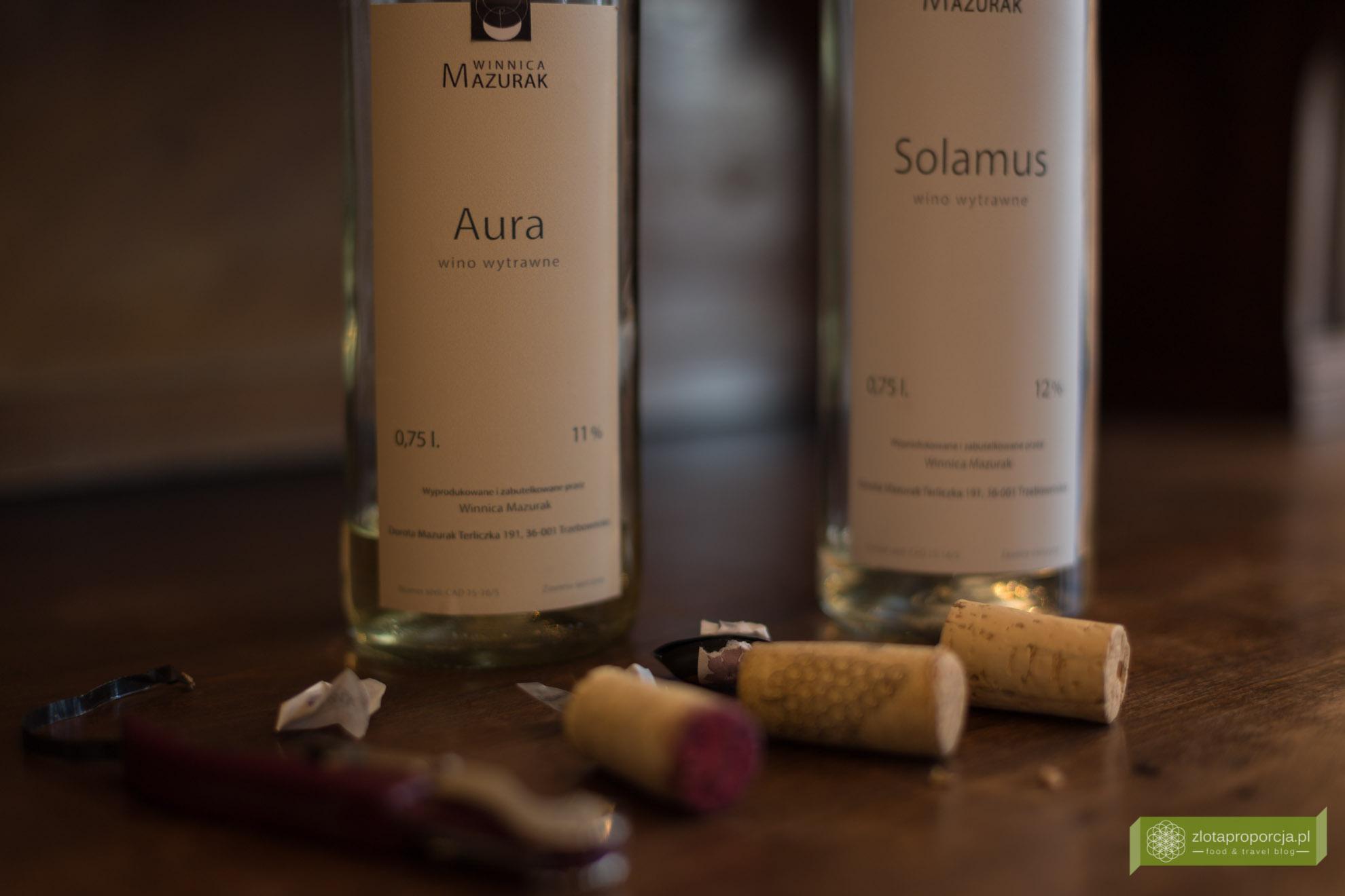 winnica Mazurak, Karpacki Szlak Wina, winnice na Podkarpaciu, winnice Podkarpacia,