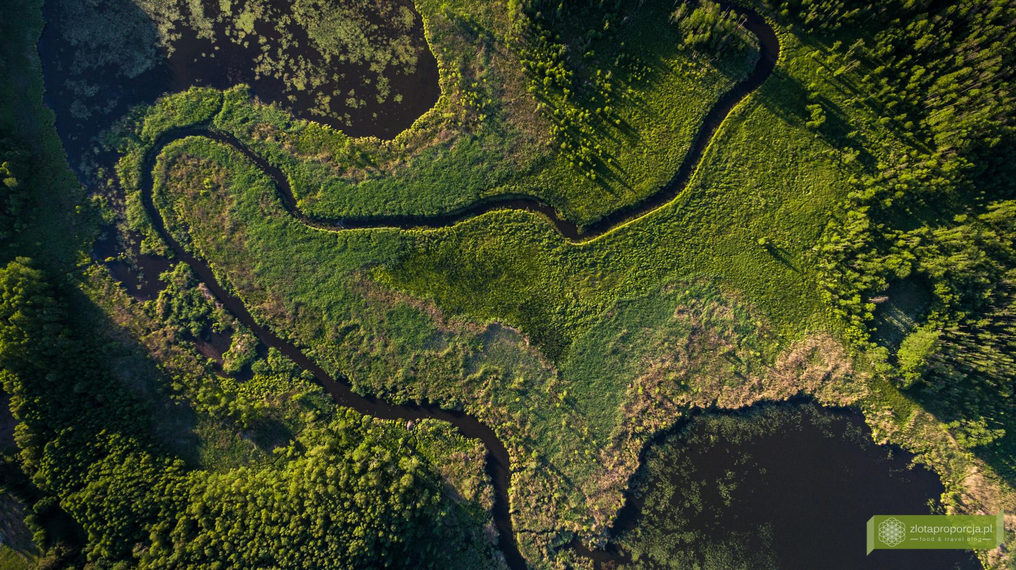 Rzeka Marycha, Suwalszczyzna, Suwalszczyzna z drona, atrakcje Suwalszczyzny, Podlasie