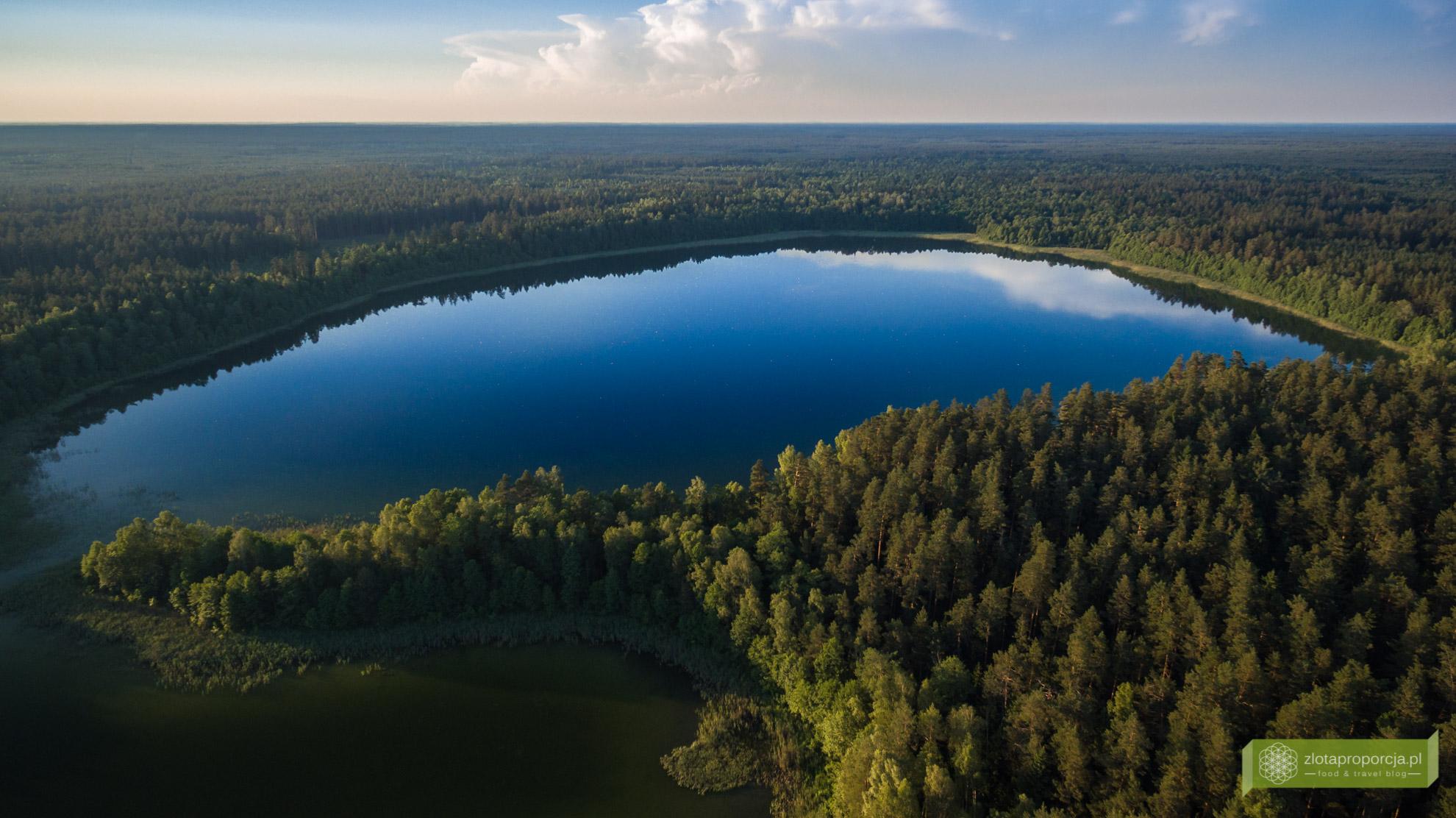 Jezioro Brożane, Suwalszczyzna, Suwalszczyzna z drona, atrakcje Suwalszczyzny, Podlasie
