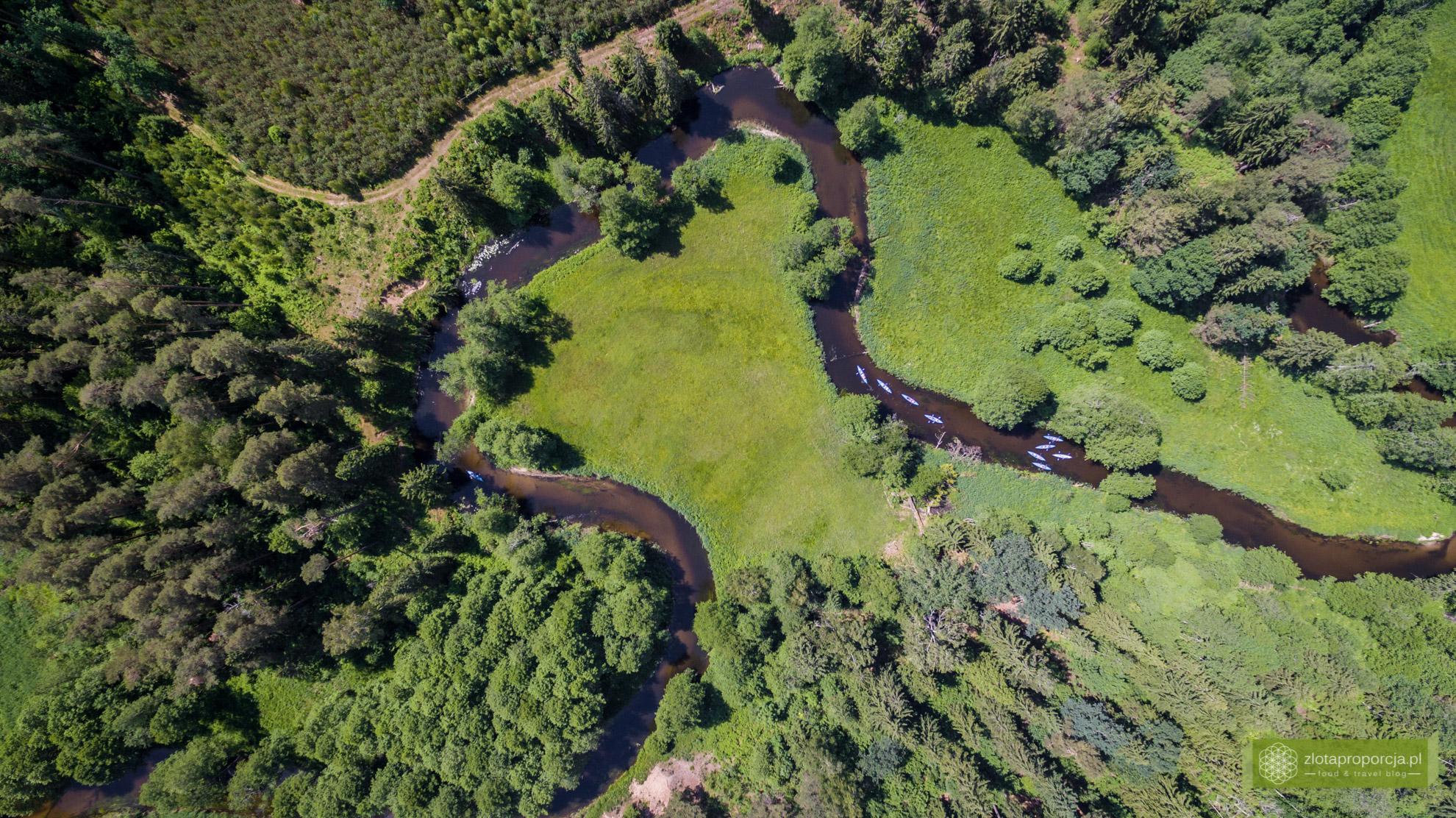 Rzeka Czarna Hańcza, Suwalszczyzna, Suwalszczyzna z drona, atrakcje Suwalszczyzny, Podlasie