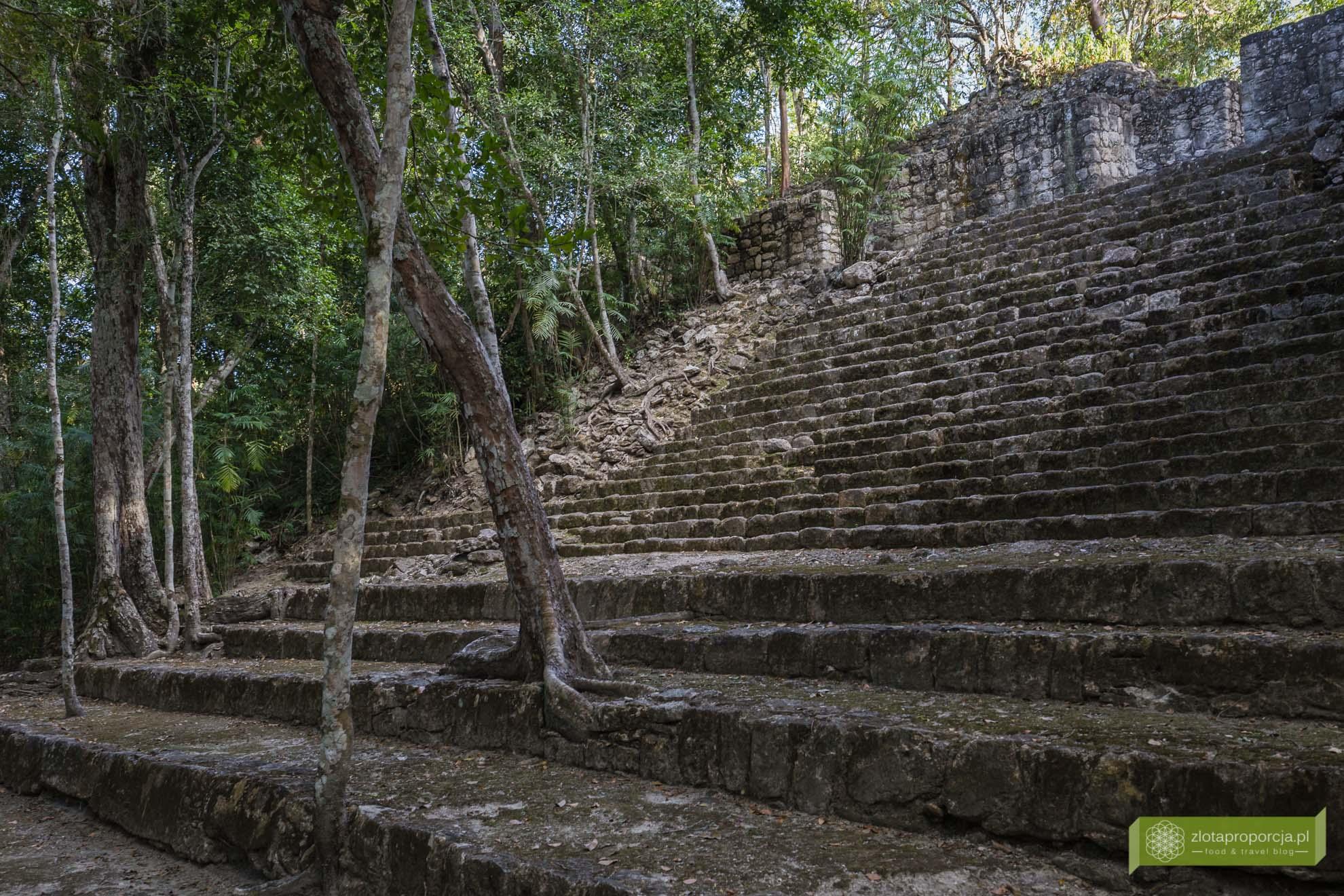 Meksyk, Miasta Majów, strefy archeologiczne na Jukatanie; Majowie budowle, Miasta Majów Meksyk, Majowie osiągnięcia; Calakmul, Jukatan, Miasto Majów w dżungli,;