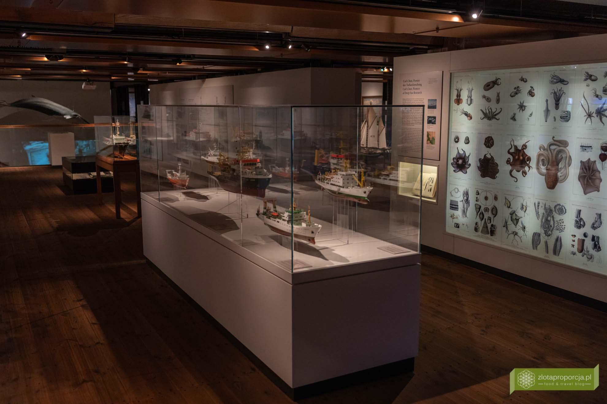Hamburg, atrakcje Hamburga, Niemcy; Międzynarodowe Muzeum Morskie; International Maritime Museum;