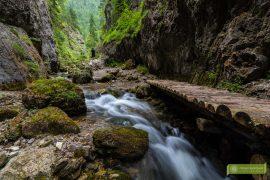 Słowacja; Góry Choczańskie; słowackie doliny; atrakcje Słowacji; słowackie Góry; Dolina Prosiecka; Wrota Dolina Prosiecka; kładki w Dolinie Prosieckiej;