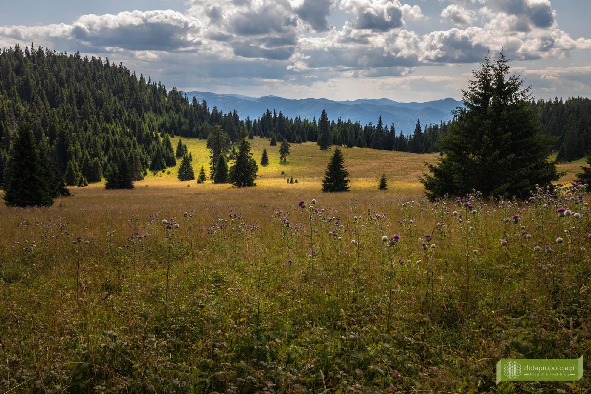 Liptiv, atrakcje Liptova; Góry Choczańskie; Wielki Chocz; słowackie góry; Słowacja; Góry Choczańskie szlaki;