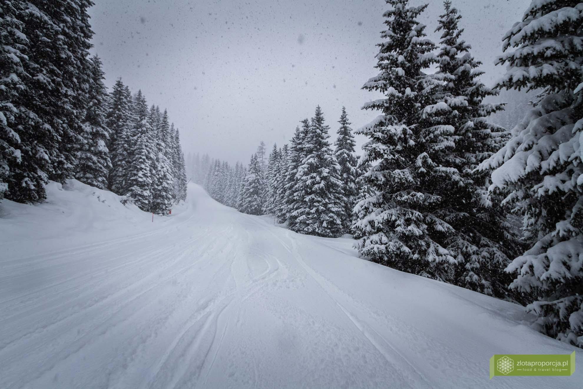 san martino di castrozza; san martino di castrozza narty; trydent narty; gdzie do włoch na narty; trydent górna adyga;