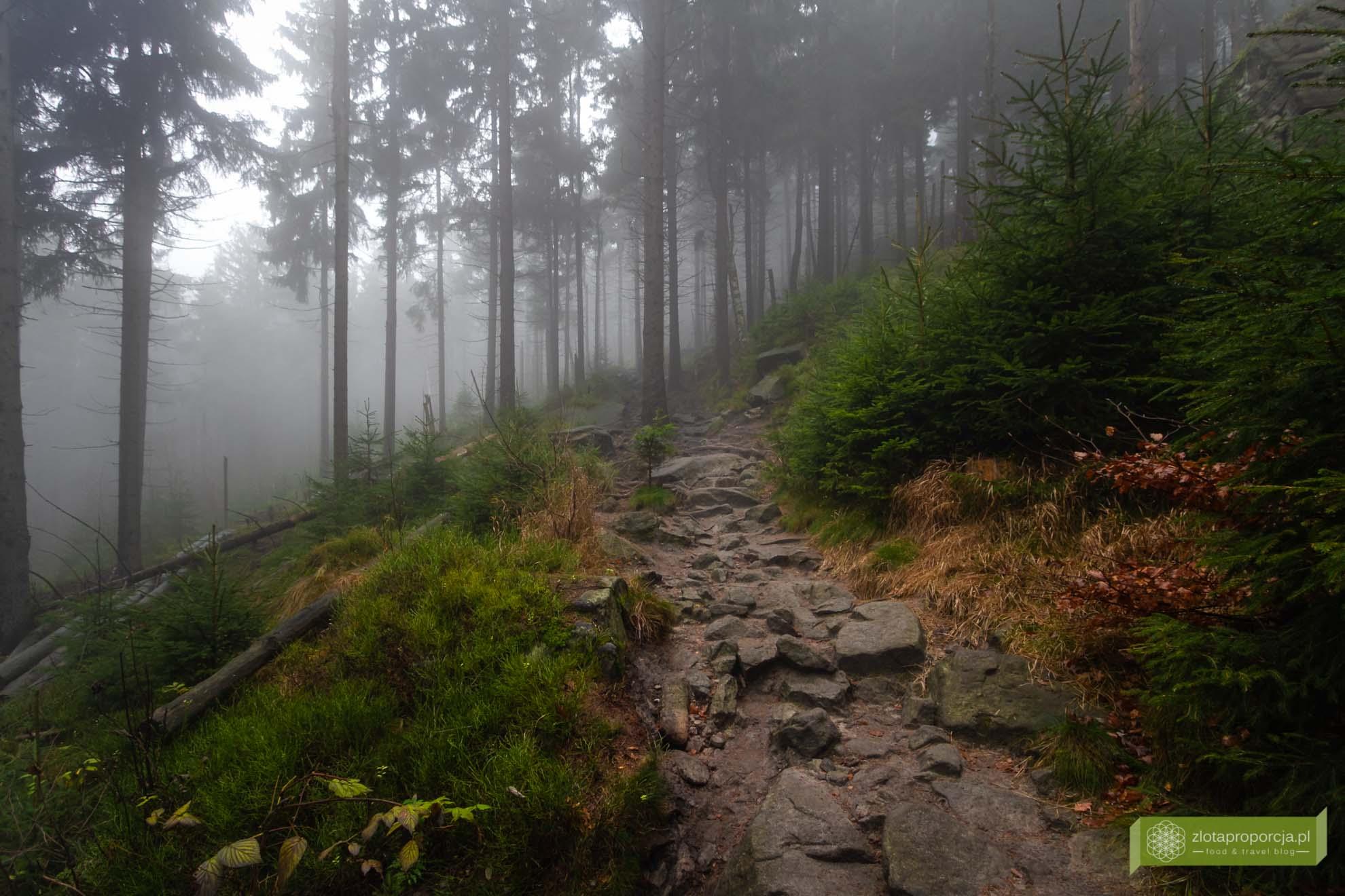 Góry Stołowe Dolny Śląsk; Góry Stołowe szlaki; Góry Stołowe atrakcje; Błędne Skały