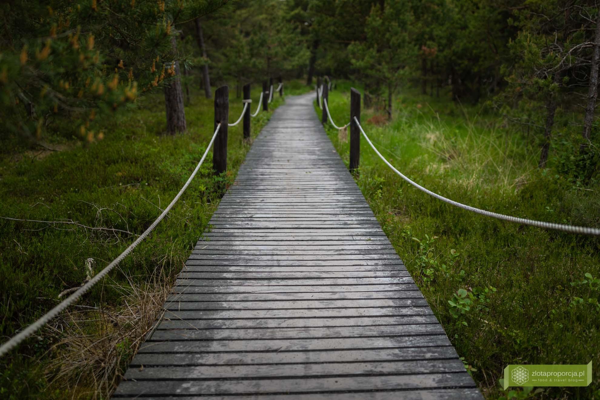 Słowiński Park Narodowy; Morze Bałtyckie, Smołdziński Las; Słowiński Park Narodowy atrakcje; Czołpino;
