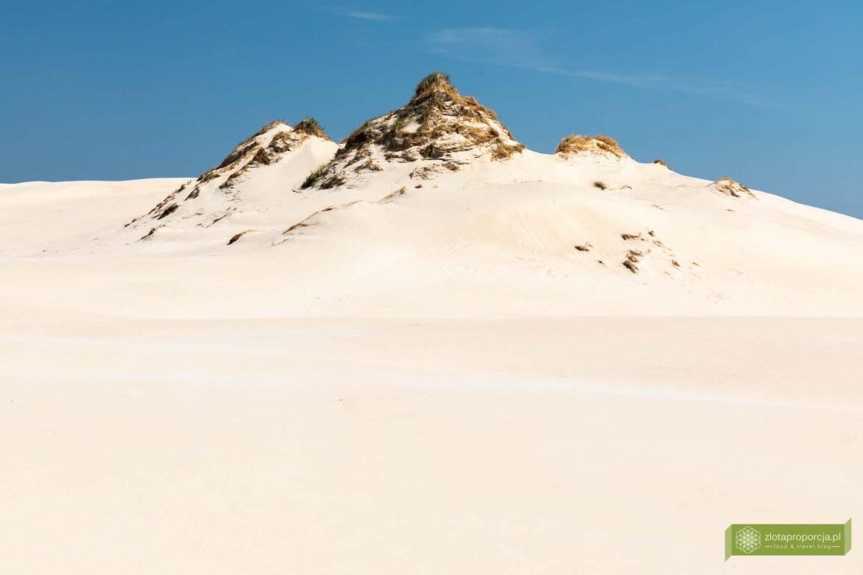 Ruchome wydmy w Rowach i Słowińskim Parku Narodowym