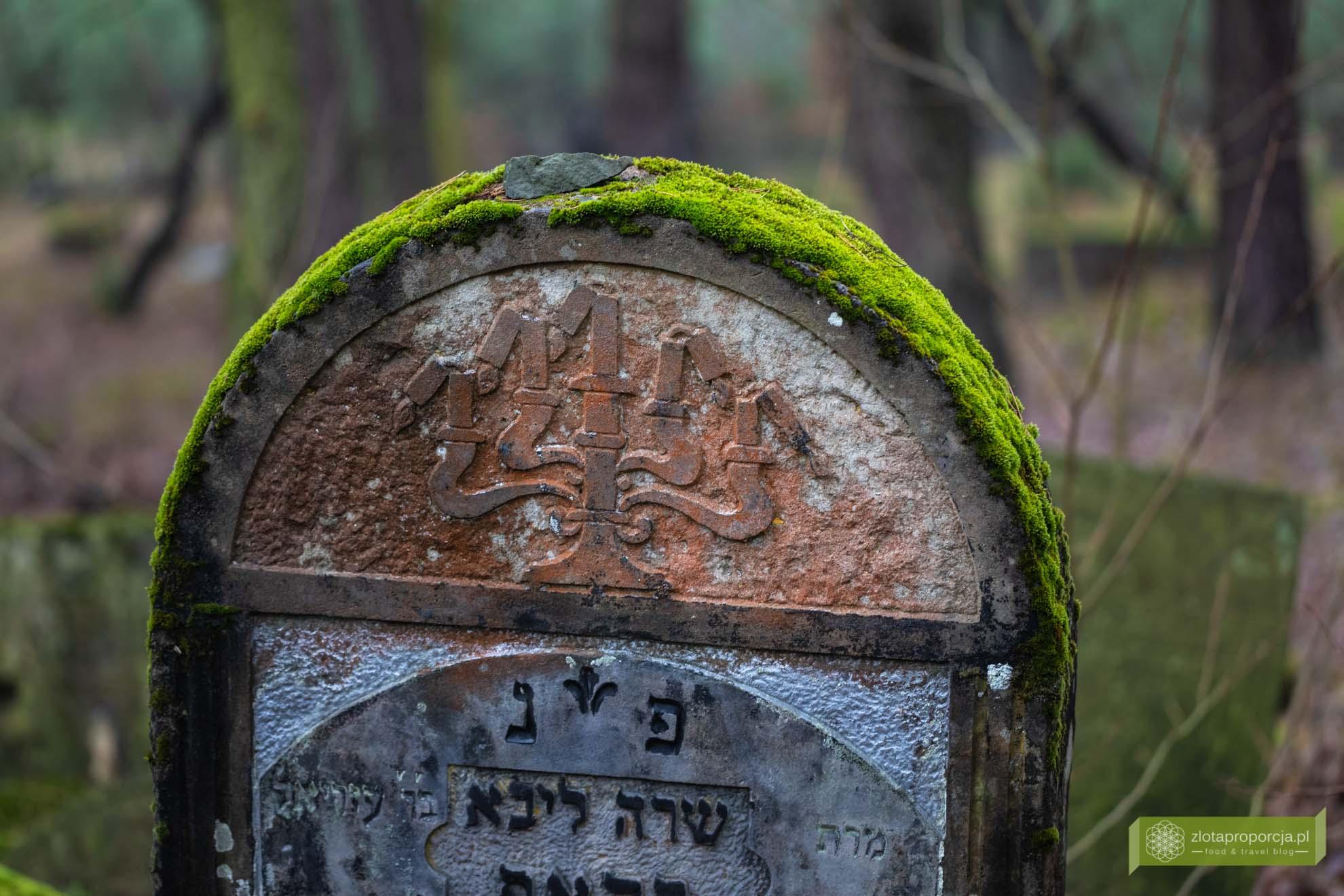 Cmentarz żydowski w Otwocku; cmentarz żydowski w Anielinie; Okolice Otwocka; Mazowiecki Park Krajobrazowy; Mazowsze; Mazowiecki Park Krajobrazowy atrakcje; macewy koło Otwocka; okolice Karczewa;