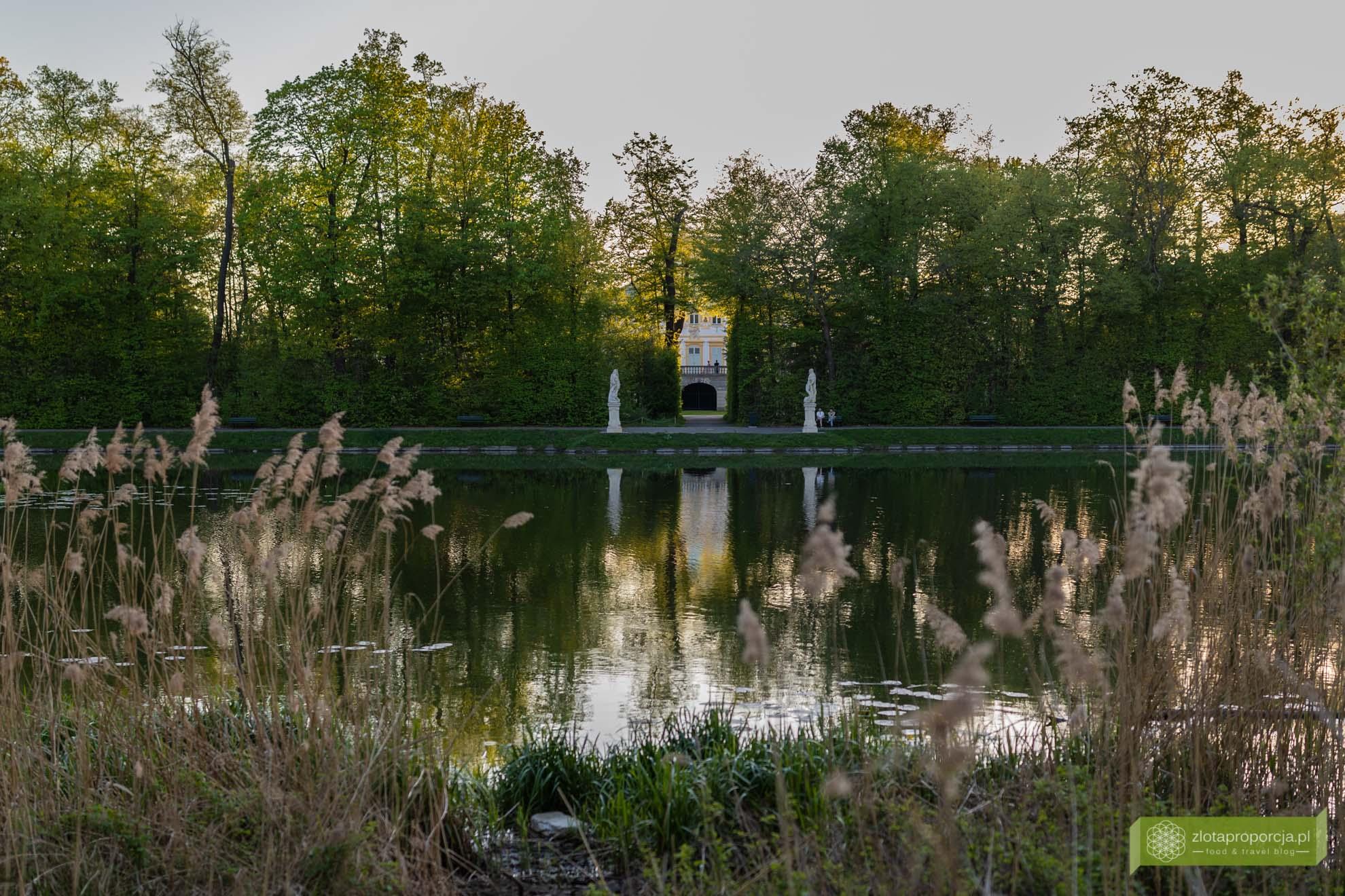 Morysin; Rezerwat Przyrody Morysin; Wilanów; atrakcje Wilanowa; Warszawa; widok na Pałac w Wilanowie Morysin;