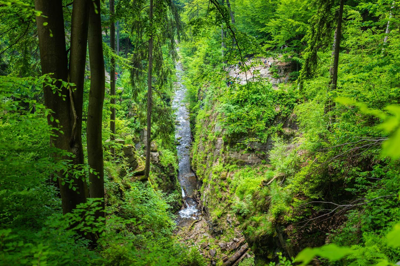 Międzygórze atrakcje; Kotlina Kłodzka; wodospad Wilczki; wodospad Międzygórze; Międzygórze; Masyw Śnieżnika;